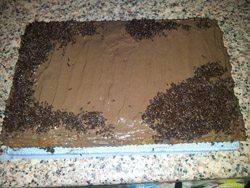 Tarta de chocolate y galleta para niños